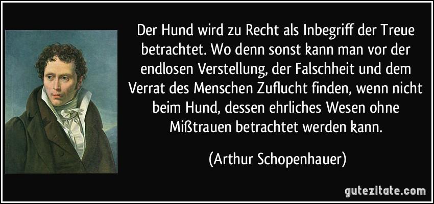 Schopenhauer zitate der mensch kann zitate und weisheiten - Wo kann man als architekt arbeiten ...