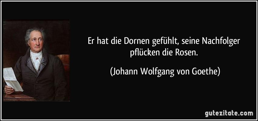 Er Hat Dornen Gefuhlt Seine Nachfolger Pflucken Rosen Johann Wolfgang Von