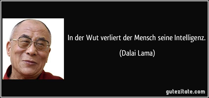 In der Wut verliert der Mensch seine Intelligenz. (Dalai Lama)