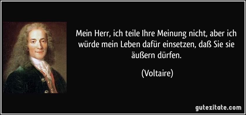 Mein Herr, ich teile Ihre Meinung nicht, aber ich würde mein Leben dafür einsetzen, daß Sie sie äußern dürfen. (Voltaire)