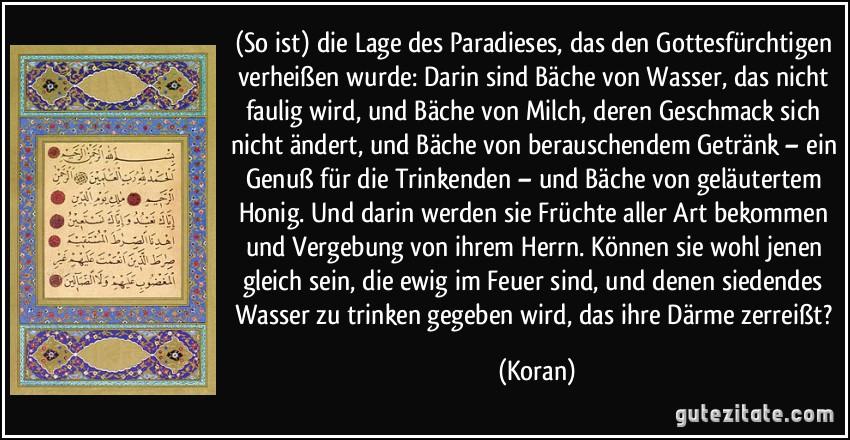 koran sprüche Gute Zitate Aus Dem Koran   das leben ist schön zitate koran sprüche