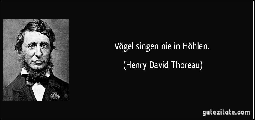 V gel singen nie in h hlen - Zitate singen ...